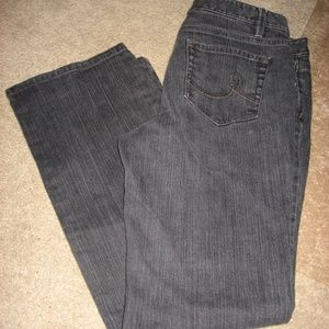 Womens Gray ANN TAYLOR LOFT Stretch Boot Jeans 10